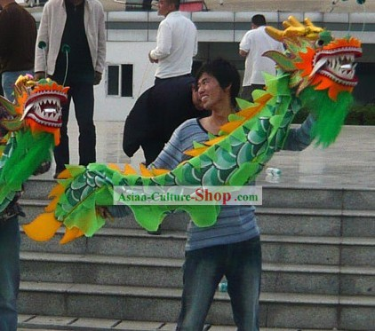 Two People Small Dragon Costume