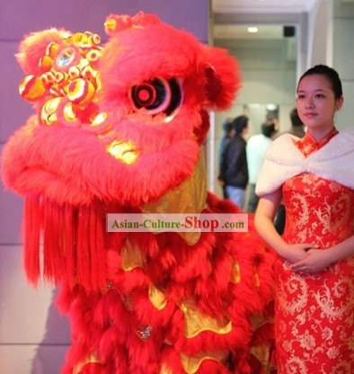 GLOW IN DARK Chinese New Year Celebration Lion Dance Costume Complete Set