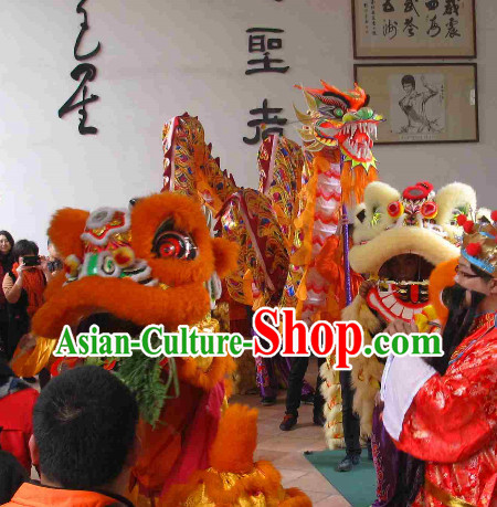 14 Meters Brand New Rainbow Dragon Dance Costume Complete Set for 8 People
