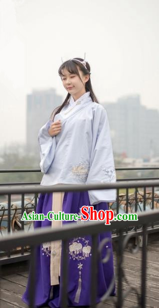 Traditional Chinese Ming Dynasty Palace Lady Hanfu Costume, Asian China Ancient Princess Dress Embroidered Clothing for Women