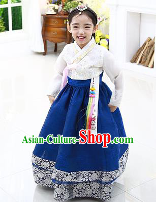 Asian Korean National Handmade Formal Occasions Embroidery White Blouse and Blue Dress Hanbok Costume for Kids