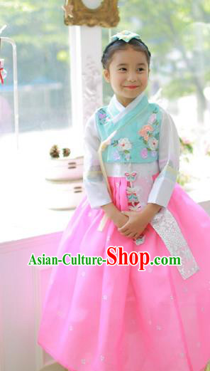 Traditional Korean Handmade Hanbok Embroidered Clothing, Asian Korean Fashion Apparel Hanbok Embroidery Costume for Kids
