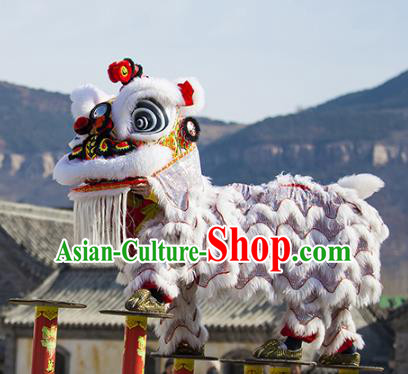 Chinese Traditional Parade Wool Lion Head Professional Celebration Lion Dance Costumes Complete Set