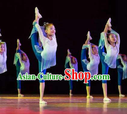 Top Grade Stage Performance Ballet Dance Costume, Professional Classical Dance Blue Dress for Kids
