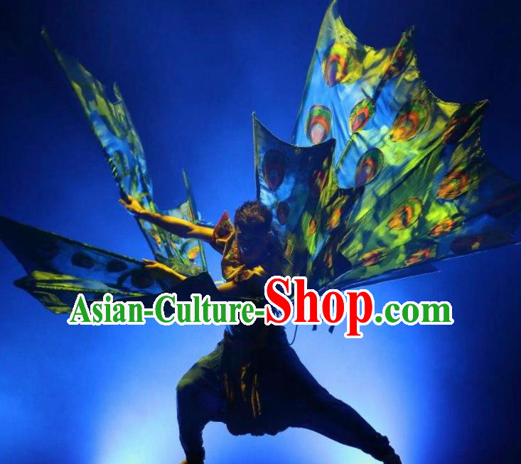 Chinese Dynamic Yunnan Ethnic Peacock Dance Stage Performance Costume for Men
