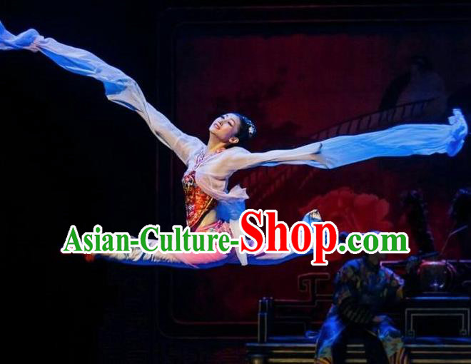 The Summer Palace Chinese Peking Opera Dress Stage Performance Dance Costume and Headpiece for Women