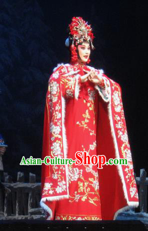 Su Wu In Desert Chinese Peking Opera Imperial Consort Red Dress Stage Performance Dance Costume and Headpiece for Women