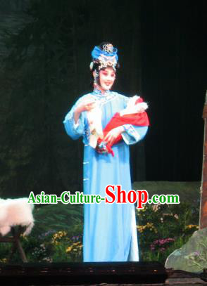 Su Wu In Desert Chinese Peking Opera Diva Blue Dress Stage Performance Dance Costume and Headpiece for Women