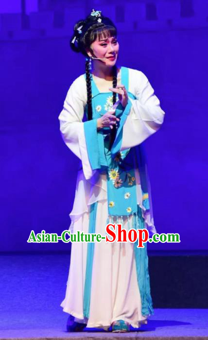 Amber Fate Chinese Beijing Opera Maidservant Dress Stage Performance Dance Costume and Headpiece for Women